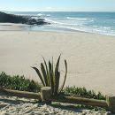 Praia de Vale Figueiros&#10場所: Sines&#10写真: ABAE