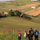 Centro de Turismo do Oeste Place: Torres Vedras Photo: Centro de Turismo do Oeste