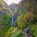 Explore Nature&#10地方: Machico&#10照片: Explore Nature