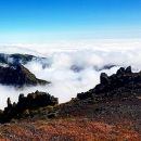 Just Go Tours&#10地方: Funchal&#10照片: Just Go Tours