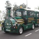 Madeira-Green-Train&#10地方: Funchal&#10照片: Madeira-Green-Train