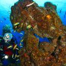 Mergulho Local: Açores Foto: Turismo dos Açores / Nuno Sá