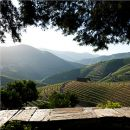 Quinta do Seixo Luogo: Douro Photo: Quinta do Seixo - Sandeman