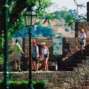 Castelo de Silves Place: Silves Photo: Turismo do Algarve