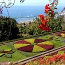 Jardim Botânico&#10Luogo: Funchal&#10Photo: Turismo da Madeira