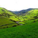 Flores&#10地方: Açores&#10照片: Floreesha - Turismo dos Açores