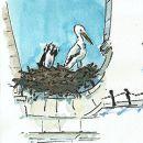 Urban Sketchers - Hélio Boto - Faro - Stork&#10場所: Algarve&#10写真: Hélio Boto