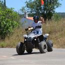 Arbez Zebra Local: Cascais Foto: Arbez Zebra