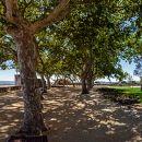 Jardim Portas do Sol Lieu: Santarém Photo: Shutterstock_StockPhotosArt