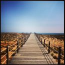 Praia do Salgados - Algarve