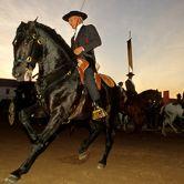 Photo: Photo: Feira Nacional do Cavalo