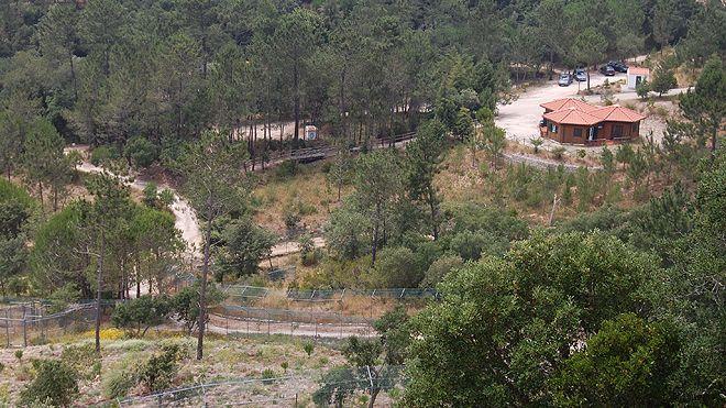 Centro Recuperação Lobo Ibérico&#10Local: Gradil - Mafra&#10Foto: Grupo Lobo
