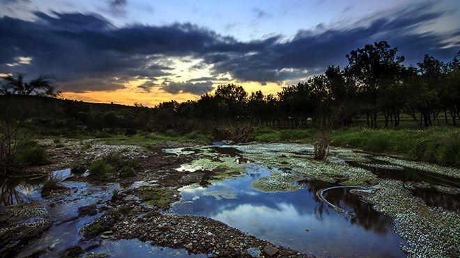 Alqueva&#10場所: Herdade Contienda&#10写真: Dark sky Alqueva, Miguel Claro