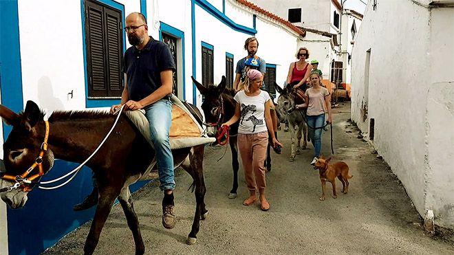 Quinta dos Burros Paderne&#10Local: Paderne&#10Foto: Quinta dos Burros Paderne