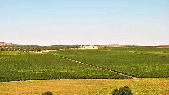 Sociedade Agrícola de Pias&#10Local: Serpa&#10Foto: Sociedade Agrícola de Pias