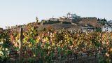 Corktour&#10Local: Estremoz&#10Foto: Corktour