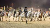 Feira Nacional do Cavalo - Golegã&#10Lugar Golegã&#10Foto: Feira Nacional do Cavalo