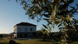 Quinta de Vodra&#10Local: Vodra&#10Foto: Quinta de Vodra