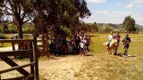 Herdade da Hera&#10Local: Manique do Intendente / Azambuja&#10Foto: Herdade da Hera