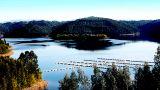 Montebelo Aguieira Lake Resort & Spa&#10Local: Mortágua&#10Foto: Montebelo Aguieira Lake Resort & Spa