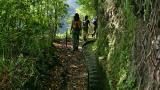 Levada&#10Место: Madeira&#10Фотография: Turismo da Madeira