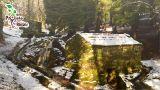 Projeto Raízes&#10Local: Cabeceiras de Basto&#10Foto: Projeto Raízes