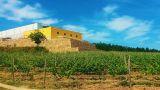 Quinta de Santa Cristina&#10Place: Celorico de Basto&#10Photo: Quinta de Santa Cristina