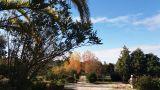 Quinta da Florência&#10Local: Seixo da Beira / Oliveira do Hospital&#10Foto: Quinta da Florência