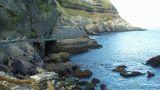 Azores Greenmark&#10Local: São Miguel - Açores&#10Foto: Azores Greenmark