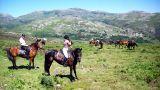 Splendid Evasion&#10Local: Vila Nova de Gaia&#10Foto: Splendid Evasion