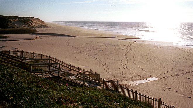 Praia da Aberta Nova&#10Place: Grândola&#10Photo: ABAE