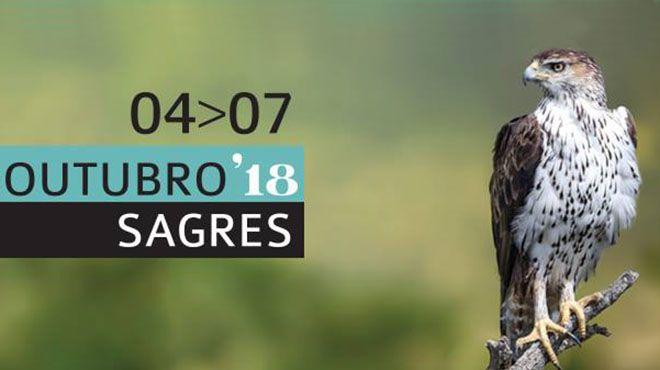 Birdwatching Sagres 2018