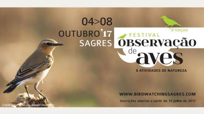 Festival Observação Aves Sagres 2017