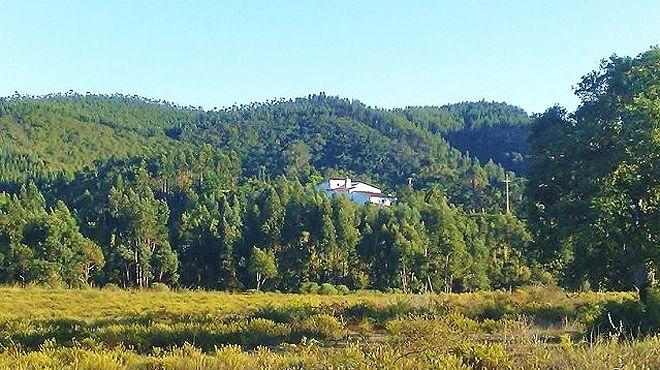 Herdade Quinta  Natura&#10Local: aljezur&#10Foto: Herdade Quinta  Natura