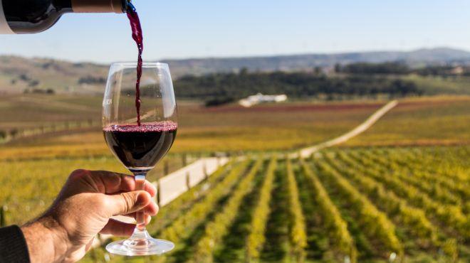 Prova de Vinhos_The Best Portugal&#10Photo: The Best Portugal
