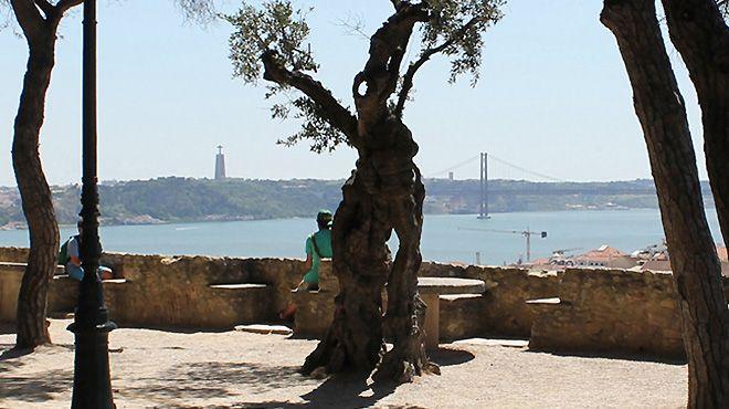 Lisbon Steps&#10Lieu: Lisboa&#10Photo: Lisbon Steps
