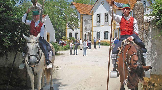 Quinta do Gaio de Baixo - Soc. Turismo no espaço Rural, Lda