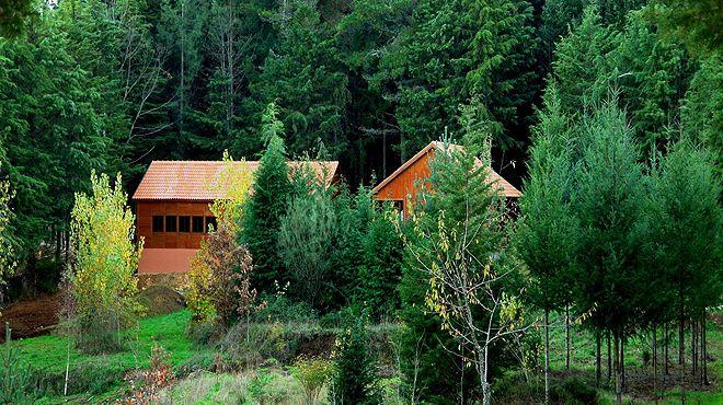 Parque Biológico de Vinhais&#10Lugar Vinhais&#10Foto: Parque Biológico de Vinhais