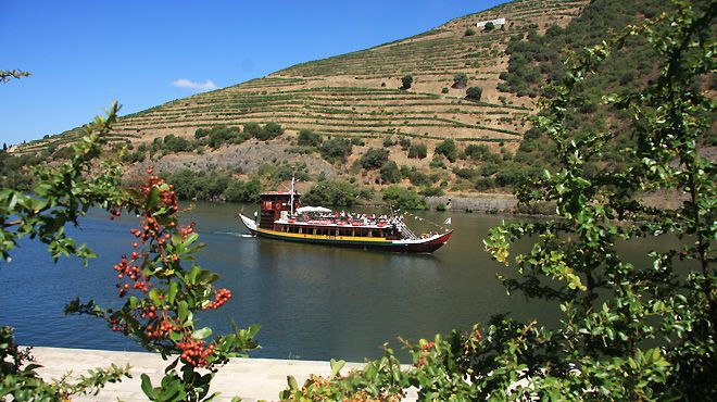 Image result for sao telmo tomaz do douro