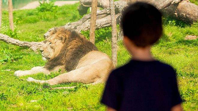 Zoo Santo Inácio&#10Plaats: Vila Nova de Gaia