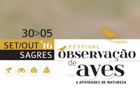 Festival de Observação de Aves -