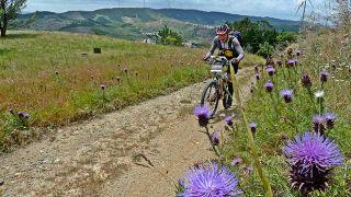 Bicicleta - Serra&#10写真:Caminhos da Natureza - Portugal  Nature Trails