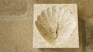Vieira esculpida numa pedra&#10Ort: Barcelos