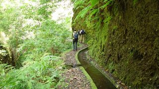 Levada&#10Local: Lombo do Urzal&#10Foto: Turismo da Madeira