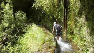 Levada&#10Lugar Madeira&#10Foto: Turismo da Madeira