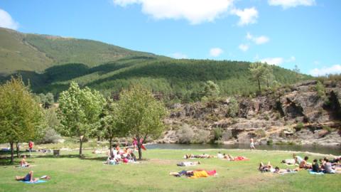 Image result for rela da reboleira