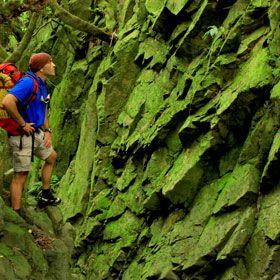 Ilhan de São JorgeLieu: São JorgePhoto: Publiçor