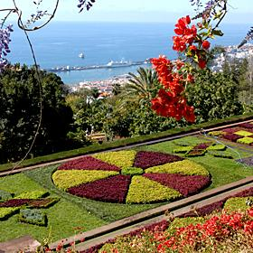 Jardim BotânicoLugar FunchalFoto: Turismo da Madeira