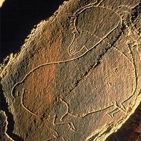 Parque Arqueológico do Vale do CôaPhoto: PAVC