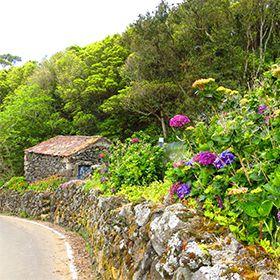Delegação de Turismo - Terceira場所: Açores写真: Floreesha - Turismo dos Açores